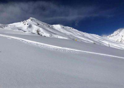 Ski trace poudre la blanche