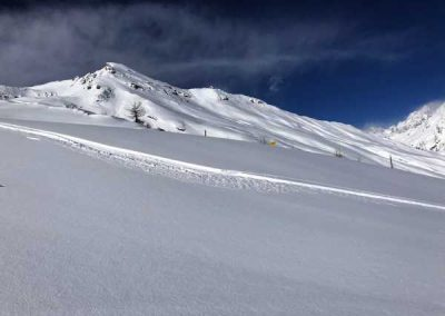 Vallouise Pelvoux freeride neige fraiche