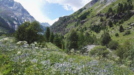 Parc National des Ecrins Fournel